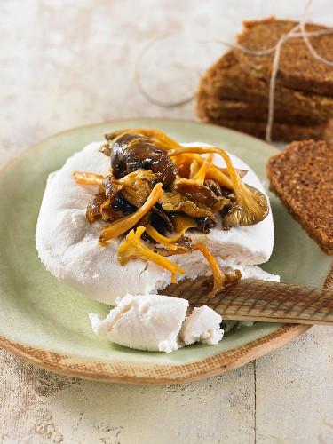 Veganer Macadamiakäse mit Pfifferlingen und Vollkornbrot