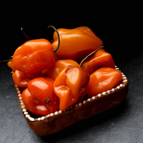 Fresh habanero chilli peppers in a clay dish