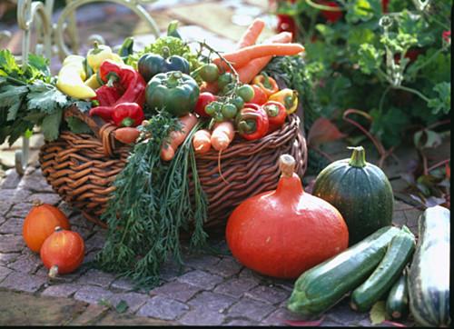 Vegetable basket, Capsicum (paprika), Daucus (carrots)