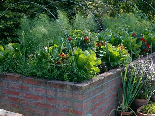 Raised bed with arched wire to stretch protective film or fleece over it