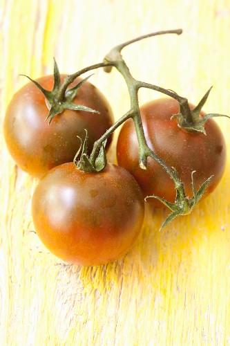 Organinc green zebra tomatoes on the vine