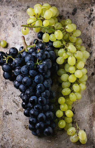Bunches of ripe wet red and white grapes over old texture metal background