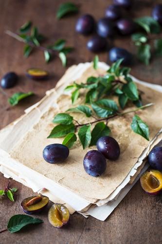 Plums and an old recipe notebook
