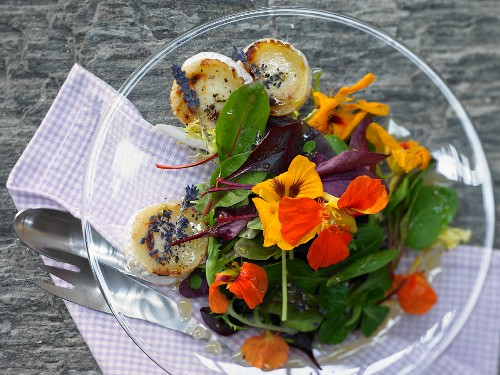 Blossom salad with lavender dressing and baked goat's cheese