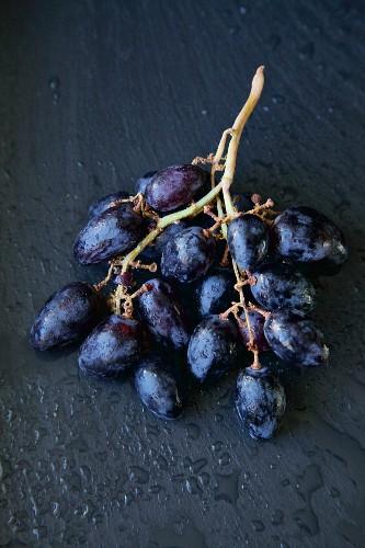 Black grapes on black background