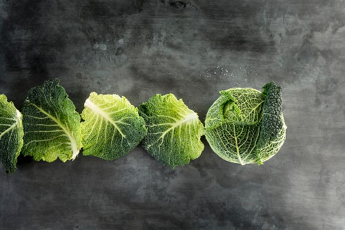Savoy cabbage and row of cabbage leaves on a grey stone surface