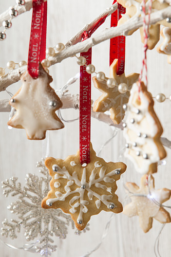 Edible Christmas tree decoration biscuits snowflake and tree shapes iced and hanging from white tree branches with other christmas decorations