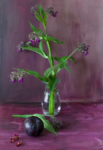 Plum and wildflowers