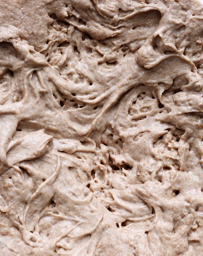 Pre-dough for sourdough (full frame)