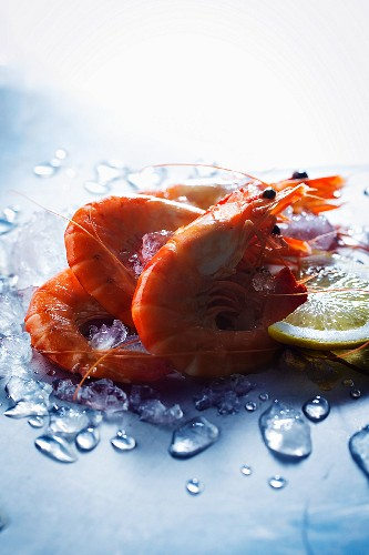 Boiled shrimps on ice with a slice of lemon