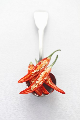 Fresh sliced red chili peppers on a silver spoon with a white background and space for text