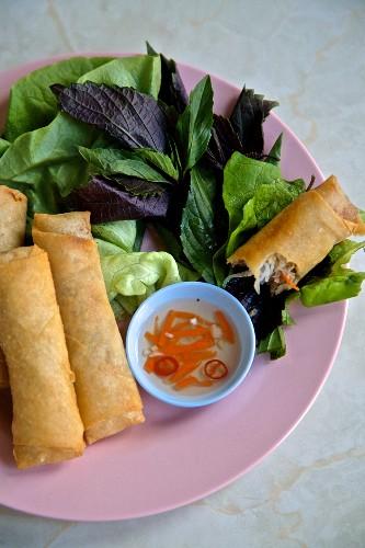 Fried spring rolls (Vietnam)