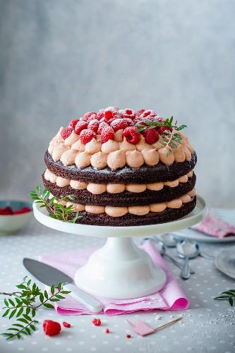 Chocolate cake with raspberry cream cheese and fresh raspberries on a cake stand