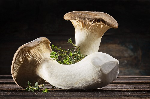 Two fresh mushrooms and thyme