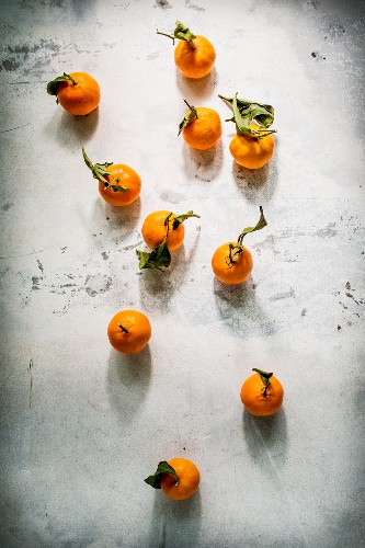 Several tangerines with leaves on a grey background (top view)