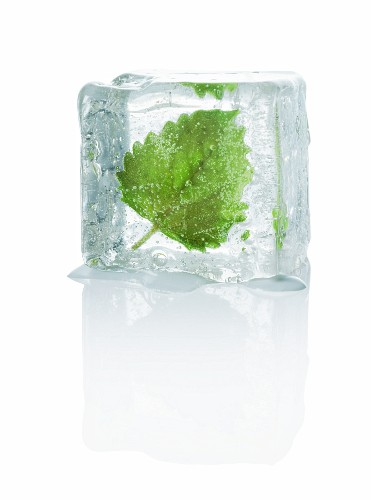An ice cube with melissa
