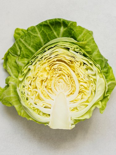 A freshly harvested spring cabbage