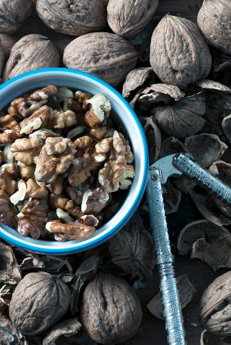 Organic walnuts, a nutcracker and nut shells
