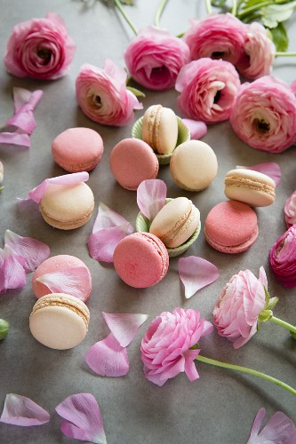 Macarons with pink roses