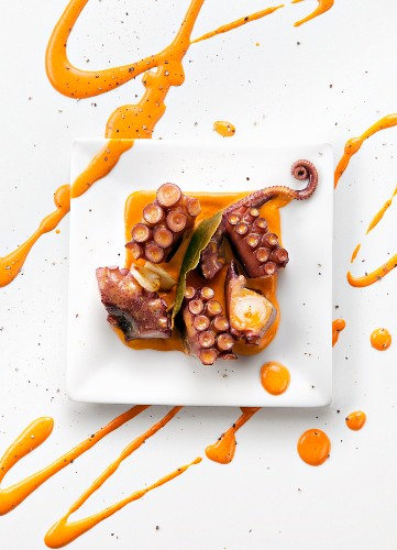 Octopus with orange pepper and nut sauce (top view)