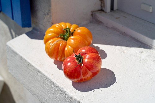 Two tomatoes on a window ledge