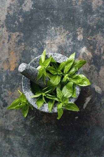 Basil leaves in a mortar