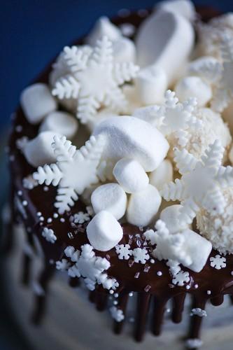 Snowflake Cake mit Mini-Marshmallows, Fondant-Schneeflocken und Kokospralinen