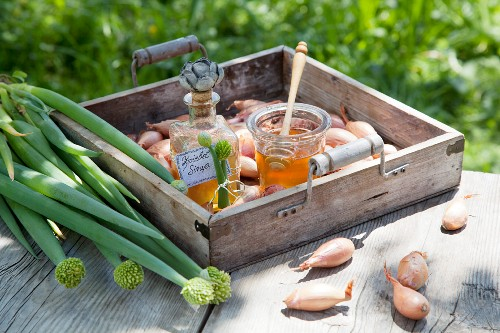 Onion syrup for coughs and colds (natural remedies)