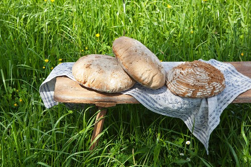 Freshly baked loaves of bread from a wood-fired oven on a wooden bench in a garden