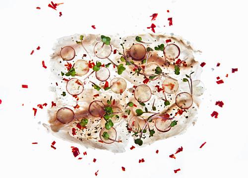 Fish carpaccio on a white background