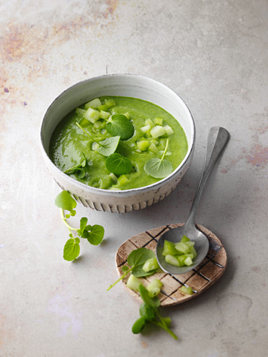 Green watercress gazpacho