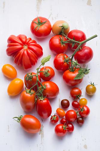Plum tomatoes, beefsteak tomatoes, cherry tomatoes and vine tomatoes