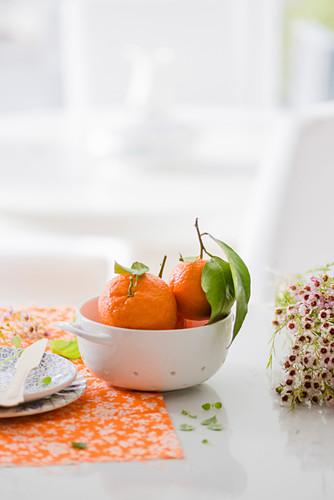 Stilleben mit Tangerinen im Schälchen neben Wachsblumen