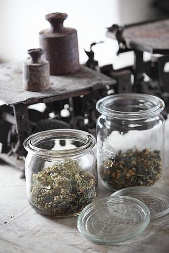 Dried herbs in jars