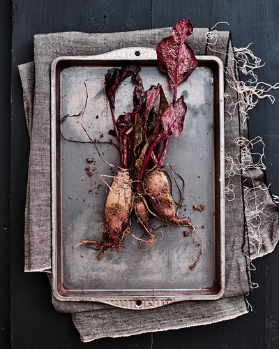 Dirty beetroots, freshly picked from the garden