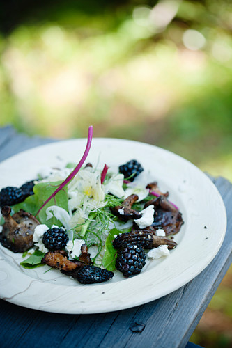 Fennel and mushroom salad