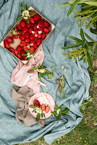 French strawberries in a wooden box on a picnic cloth