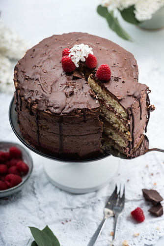 Cake with chocolate cream and raspberry puree (vegan)