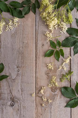 Holunderblüten auf Holzuntergrund