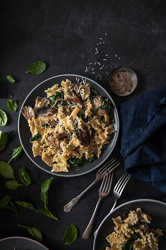 Pasta dish with mushrooms, parsley, cream, garlic, spinach and cheese, plated