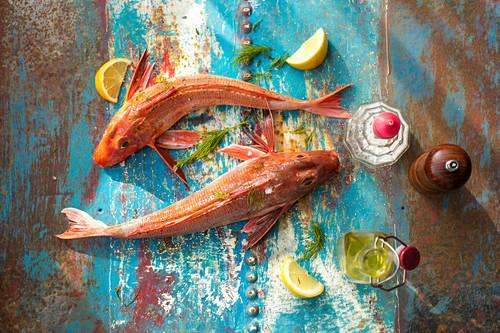 Gurnard, olive oil, pepper, sea salt and lemon