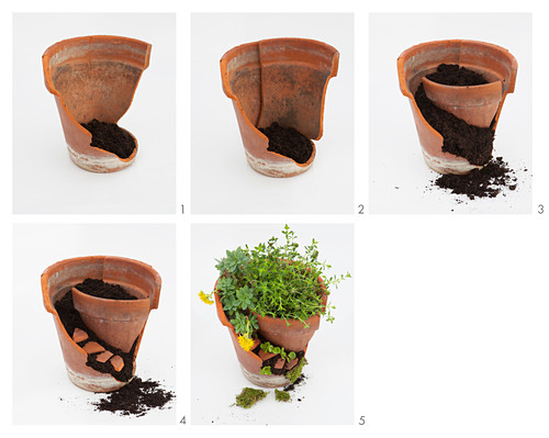 Mini-Terrassengarten als Tischdekoration