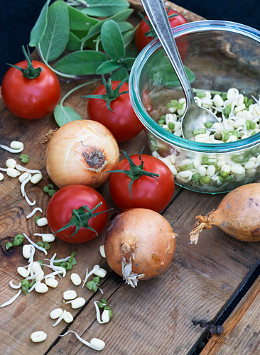 Tomatoes, onions and bean sprouts