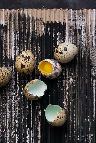Still life of quail eggs