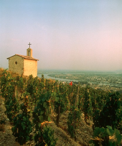 Old chapel in La Chapelle vineyard, Tain-l'Hermitage, Rhône