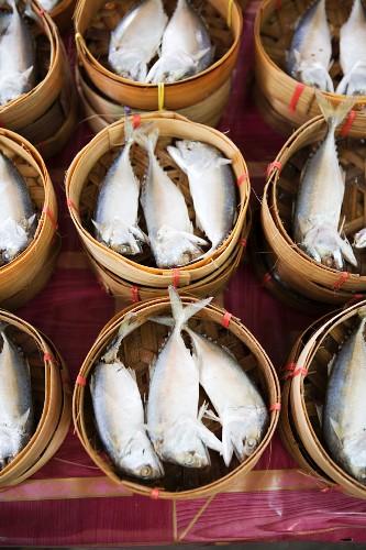 Pla Tuu Nung (gedämpfte Makrelen) in Dampfkörbchen (Thailand, Asien)