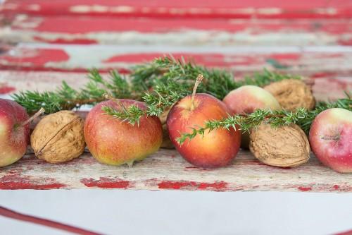Festive arrangement of apples, walnuts and juniper sprigs