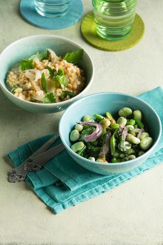 Rote Linsen in Kokosmilch und warmer Erbsen-Bohnen-Salat mit Salbei