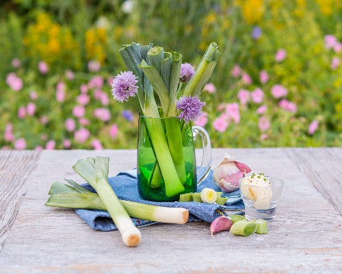 Leek, chive flowers and garlic on a garden table