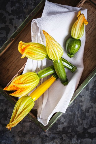 Courgette flowers on a cloth in a wooden crate
